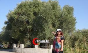 Yazar Elif Çırak anıt ağaca hayran kaldı